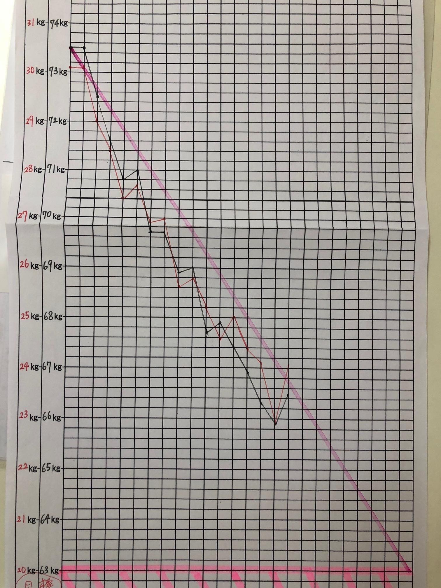 ヘルシー耳ツボダイエットグラフ