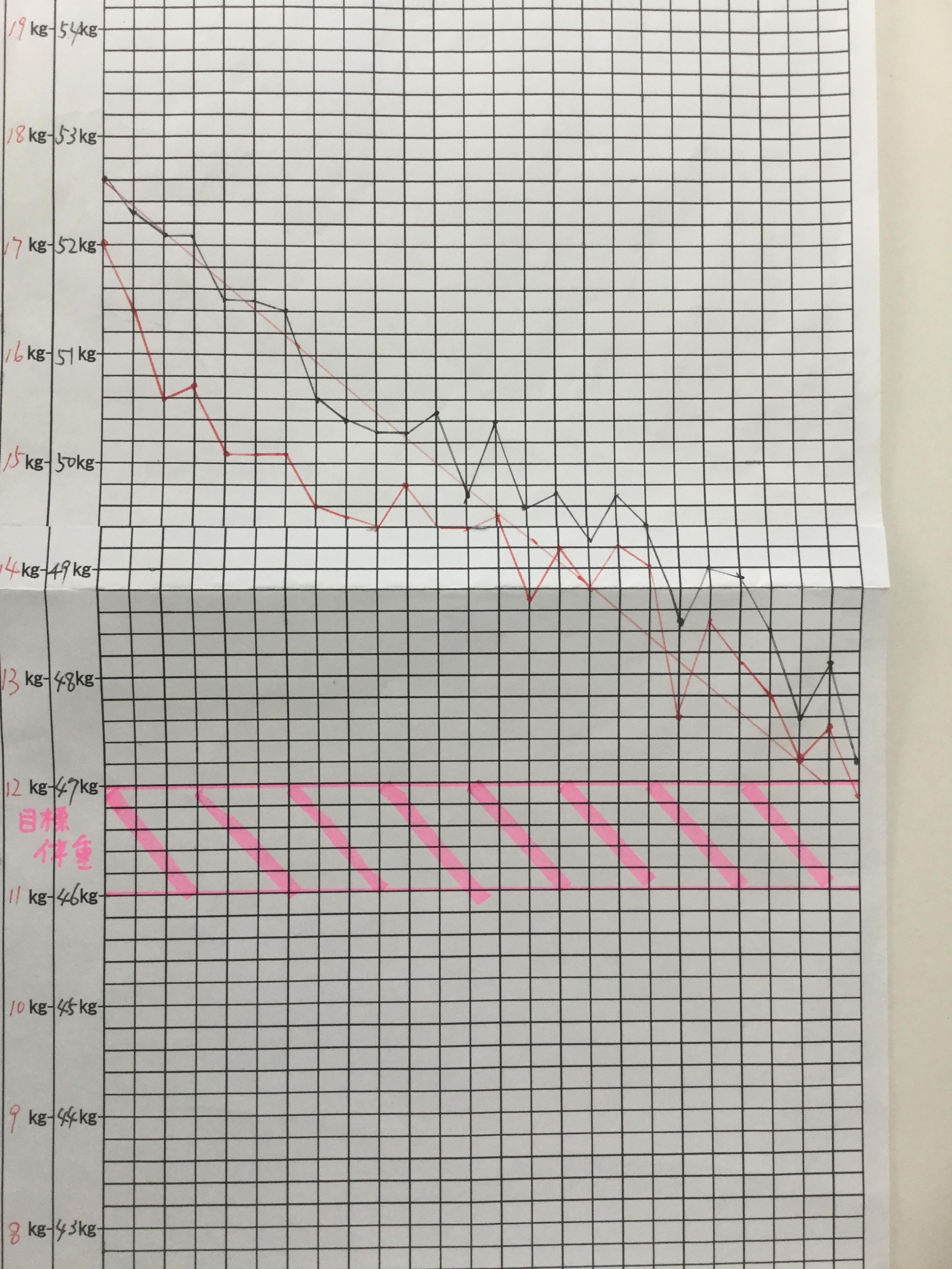 ヘルシー耳ツボダイエットのグラフ