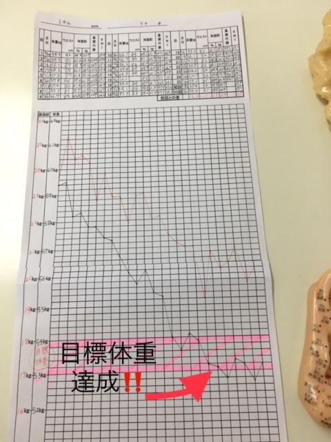 新垣和子さんグラフ