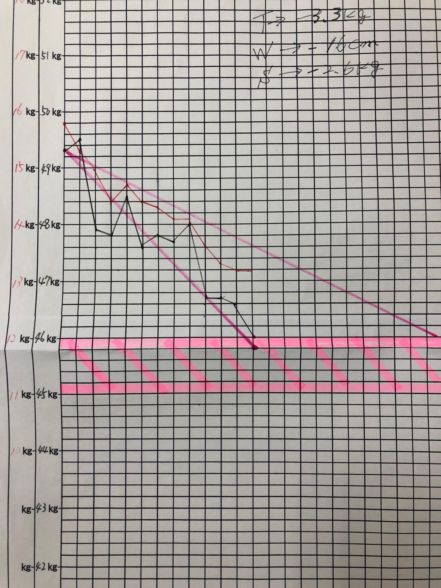 耳ツボダイエット ダイエットグラフ